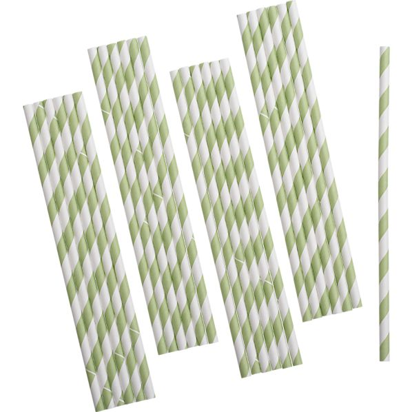 Set of 25 Green Paper Straws