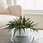 Artificial Pencil Succulent