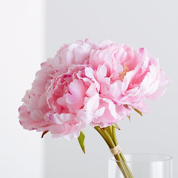 Pink peony bunch reviews crate and barrel mightylinksfo Gallery