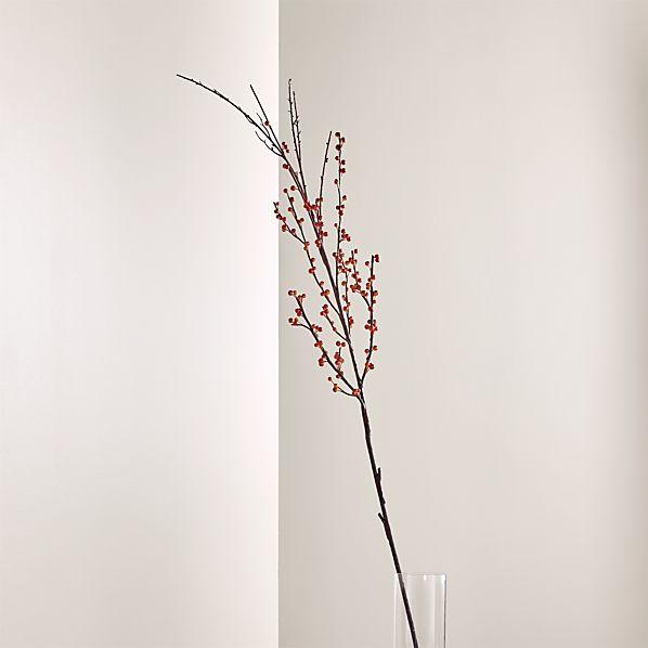 Pepperberry Stem Branch