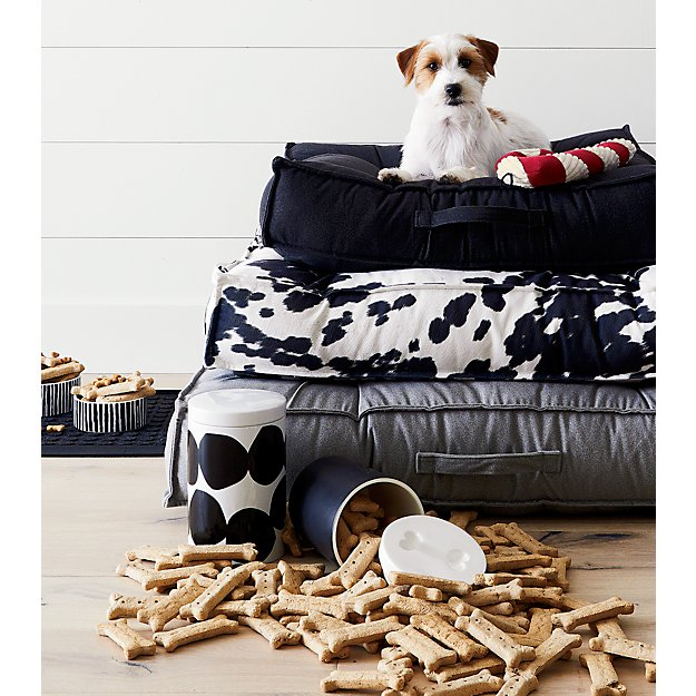 Magisso dog treat jar crate and barrel for Crate and barrel dog