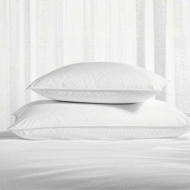 Pillow Protectors, Set of 2