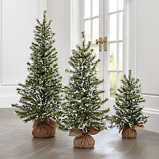 flocked pine trees - Crate And Barrel Christmas Decorations