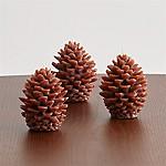 Mini Pinecone Candles, Set of 3