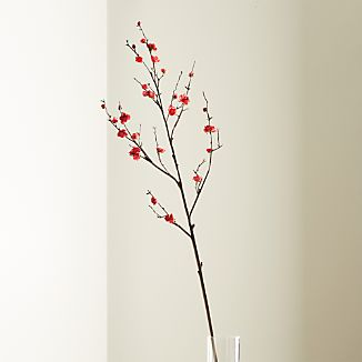 Plum Blossom Flower Stem
