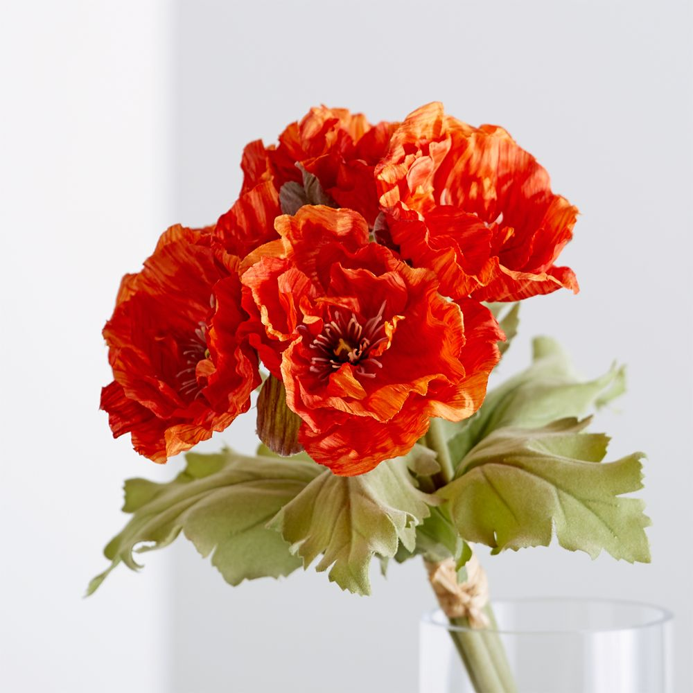 Poppy Bunch - Crate and Barrel
