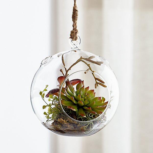 Hanging Glass Terrarium Reviews Crate And Barrel