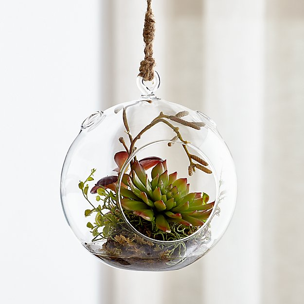 Hanging Glass Terrarium - Image 1 of 6