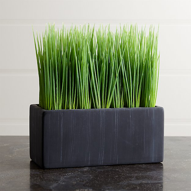 Large Potted Grass - Image 1 of 3