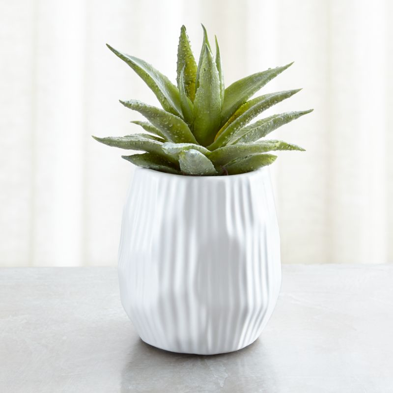 Potted Faux Single Succulent Plant Reviews Crate And Barrel