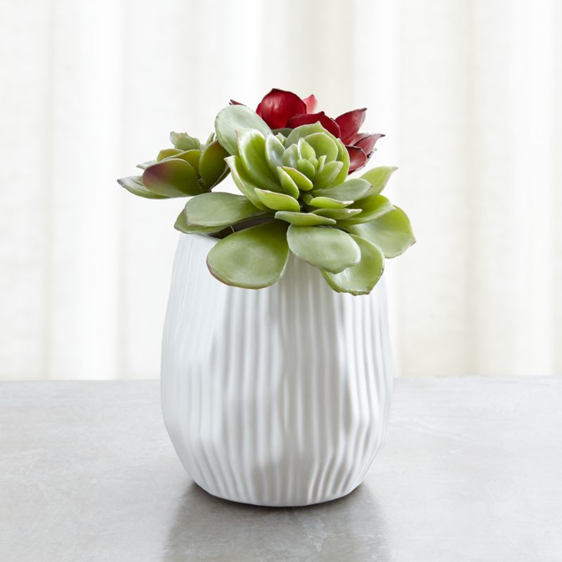 Potted Faux Succulent Trio Reviews Crate And Barrel