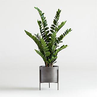 Faux Potted ZZ Plant