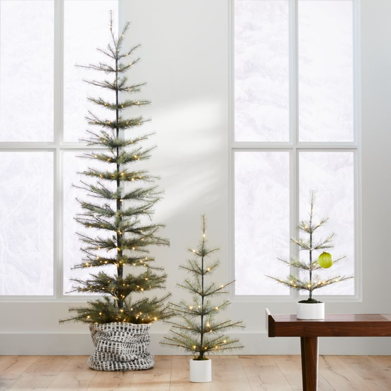 Led Pre Lit Pine Trees by Crate&Barrel