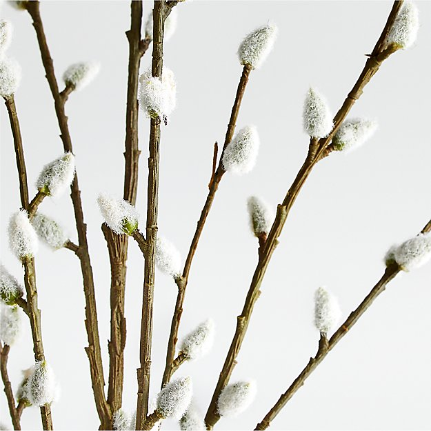 Pussy Willow Spray - Image 1 of 5