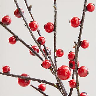 Red Berry Stem