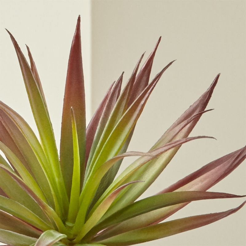 Red Yucca Faux Succulent Stem Reviews Crate And Barrel