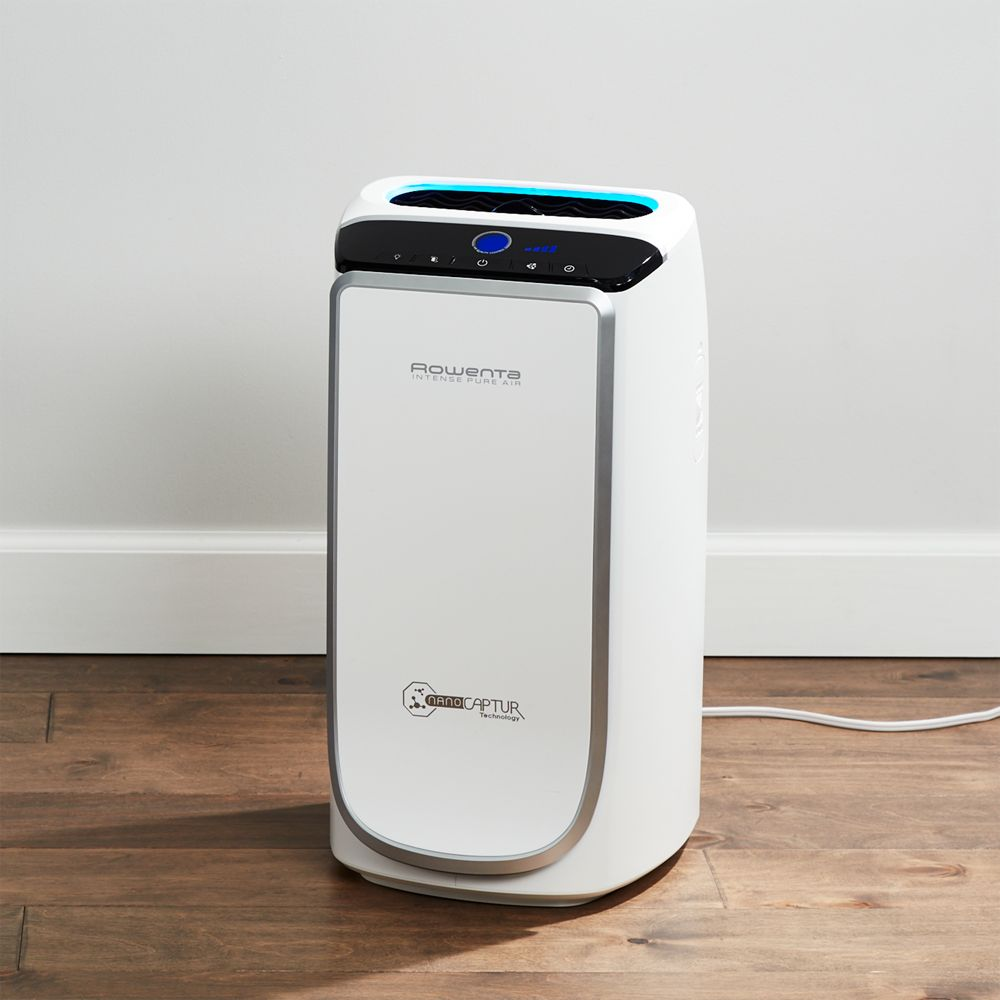 Rowenta ® Intense Pure Air Purifier - Crate and Barrel