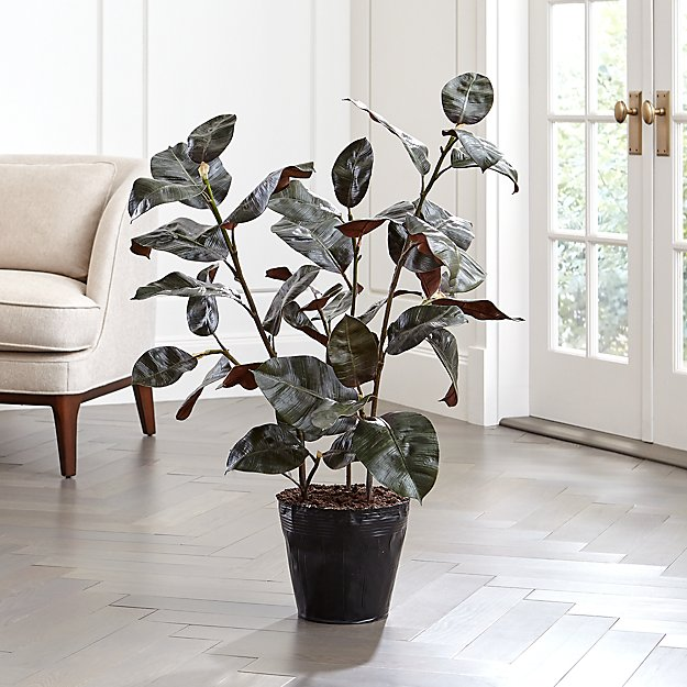 Artificial Rubber Tree - Image 1 of 3