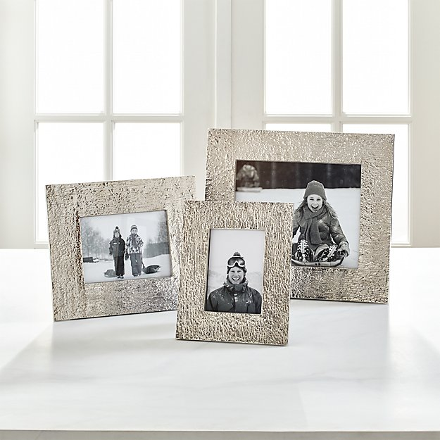 Silver Bark Picture Frames | Crate and Barrel