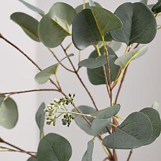 Silver Dollar Faux Eucalyptus Stem