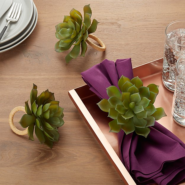 Succulent Napkin Ring Reviews Crate And Barrel