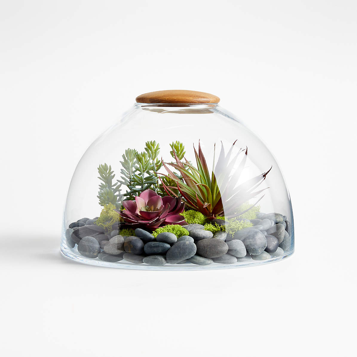 Glass Terrarium With Wood Lid Crate And Barrel Canada