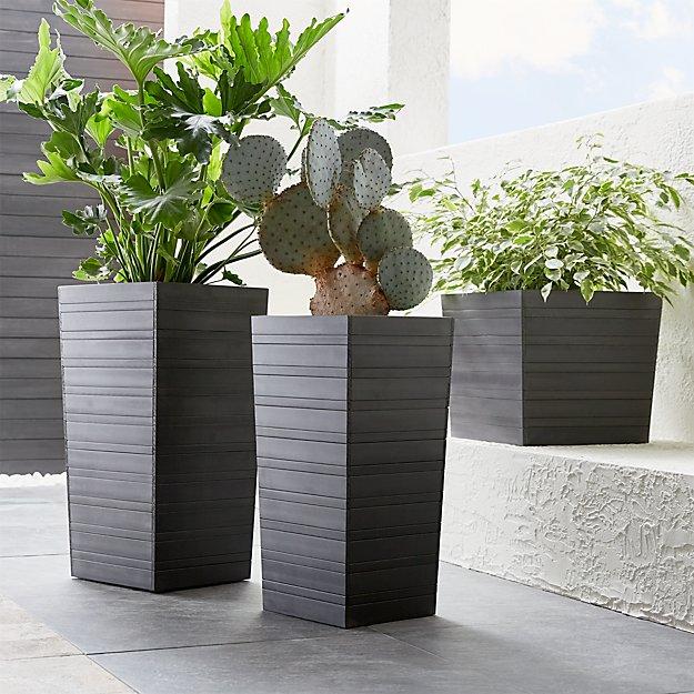 Tidore Planters