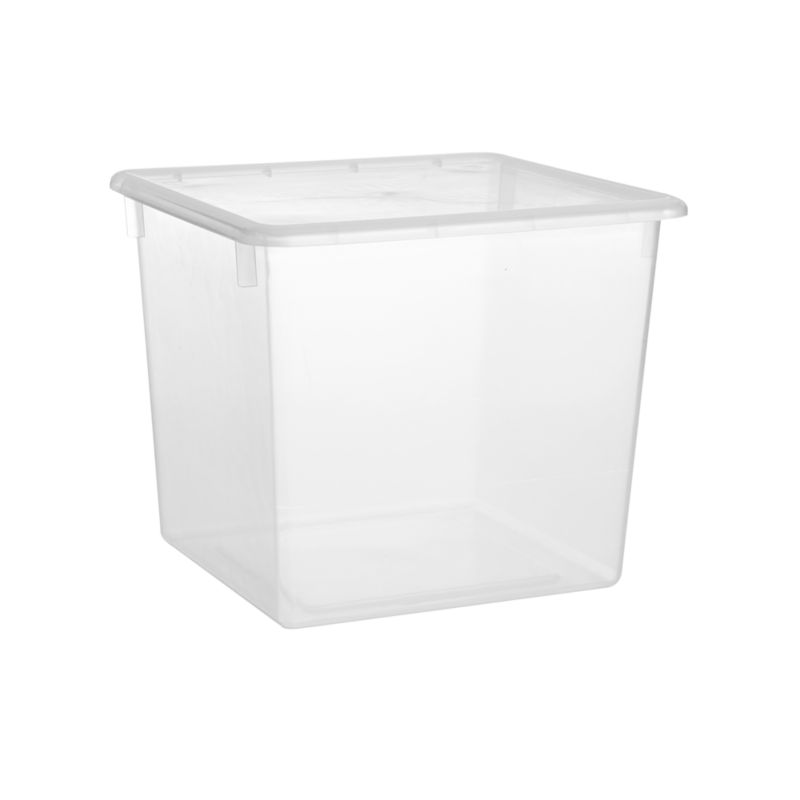 Large Clear Plastic Storage Box Reviews Crate and Barrel