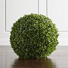 TopiaryBalls24InSHS17