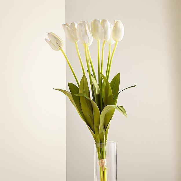 White Long-Stem Tulips Set of 9