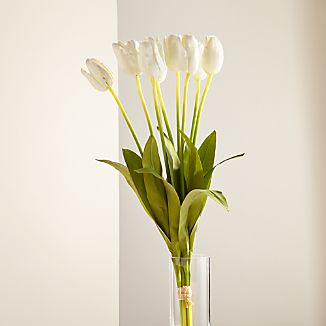 White Long-Stem Tulips Set of 9