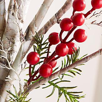 Twig Berry Stem