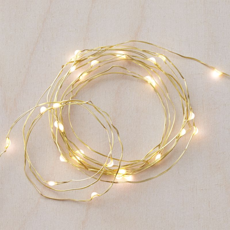 Twinkle gold 50 string lights reviews crate and barrel workwithnaturefo