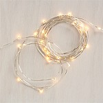 Twinkle Silver 50' String Lights