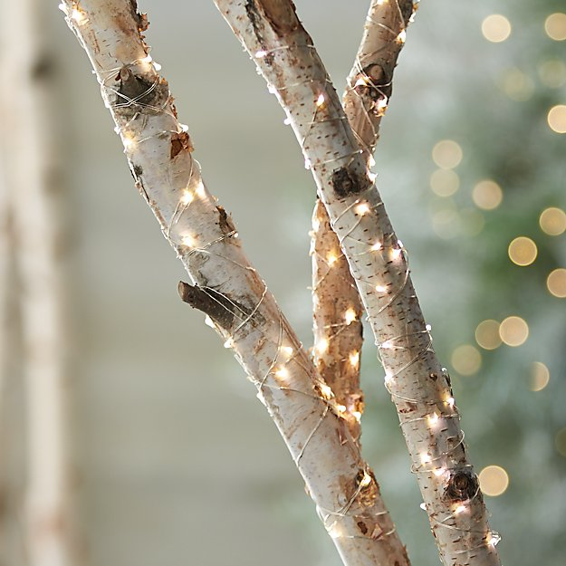 Twinkle silver string lights crate and barrel twinklestringlightf13 workwithnaturefo