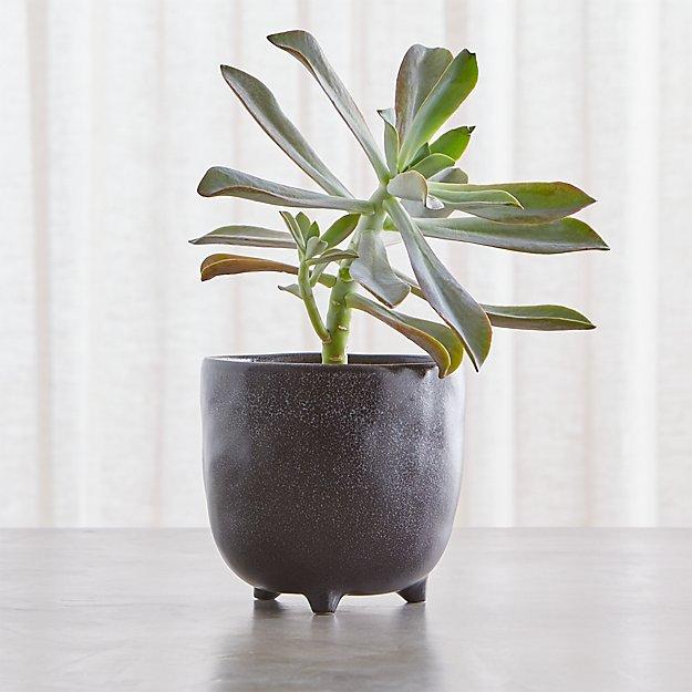 vaquita small black footed planter reviews crate and barrel. Black Bedroom Furniture Sets. Home Design Ideas
