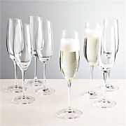 Viv Champagne Glasses, Set of 8