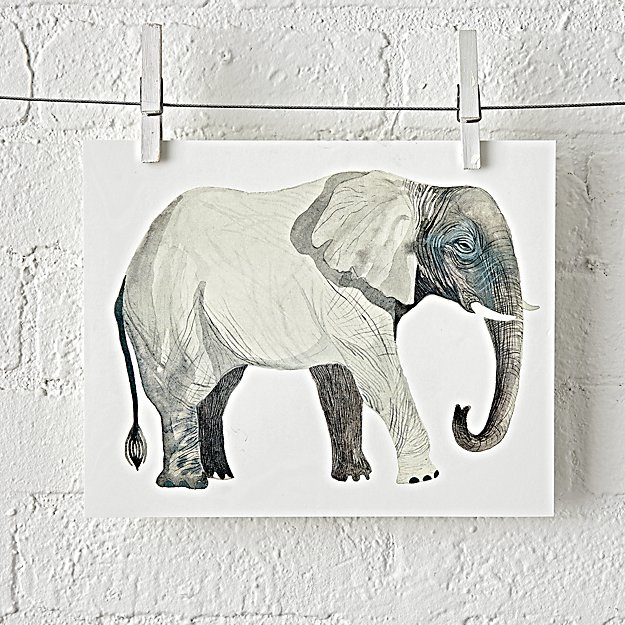 Safari Unframed Wall Art Reviews Crate And Barrel