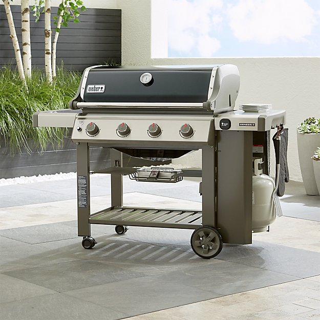 Ns Weber Genesis Propane Gas Grill Crate And Barrel