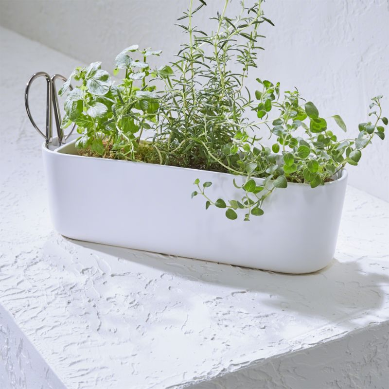 Herb Planter With Scissors Reviews Crate And Barrel