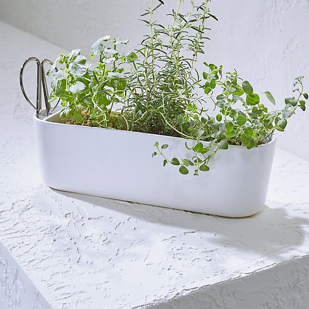 Herb Planter Beauteous Herb Planter With Scissors  Crate And Barrel Decorating Inspiration