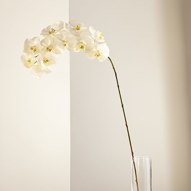 White Orchid Stem - Image 1 of 5