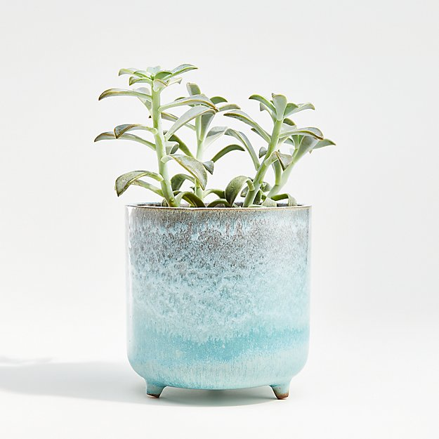 Zea Small Blue Footed Planter - Image 1 of 9