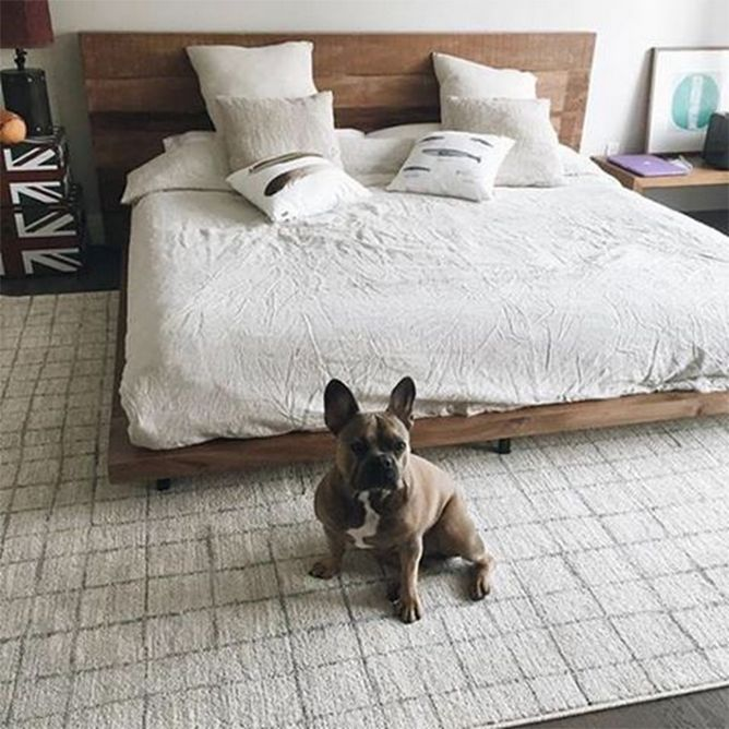 Atwood bed