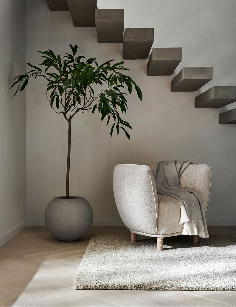 Concrete steps above a white accent chair and tall plant in a grey circular vase