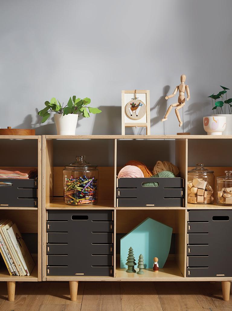 Baby Kids Storage Room And Playroom
