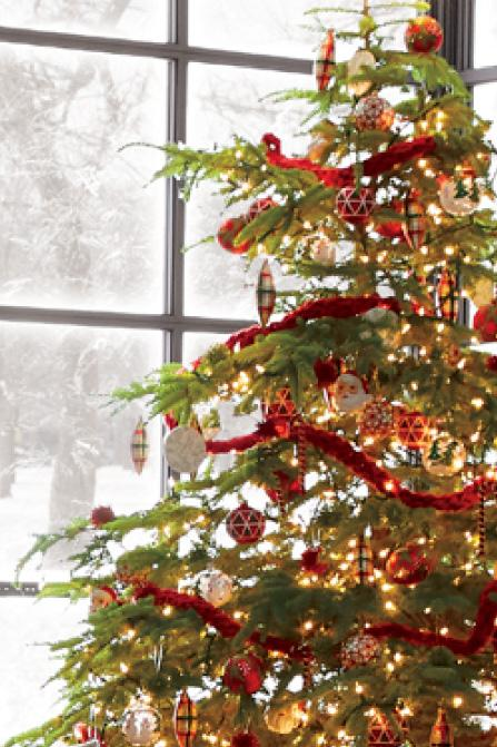 special finds for your collection shop christmas trees - Christmas Tree Shop Careers