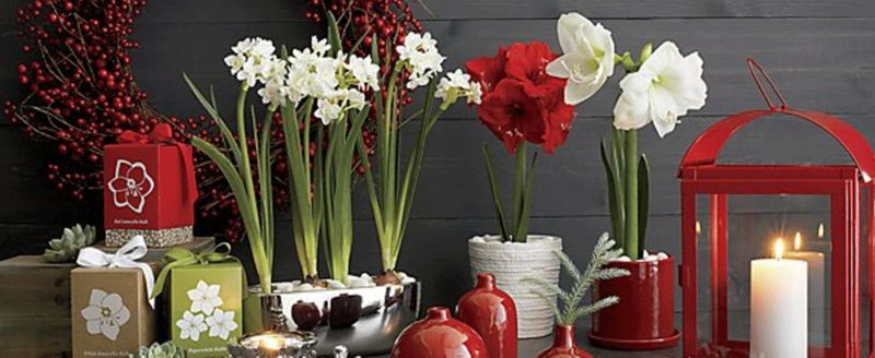 Chinese New Year Decor Ideas For The Home