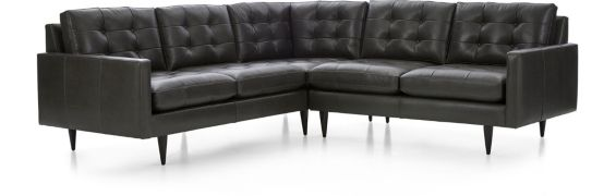 Petrie Leather 2-Piece Corner Sectional Sofa (Left Arm Corner Sofa, Right Arm Loveseat) shown in Laval, Carbon