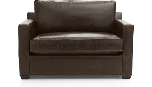 Davis Leather Twin Sleeper Sofa shown in Libby, Cashew
